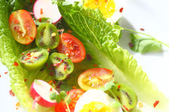 Salad with baby kiwis and radishes. Overhead of lettuce leaves with cherry tomatoes, baby kiwi fruits, radishes and boiled eggs with red pepper flakes royalty free stock image