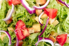 Salad background Royalty Free Stock Image