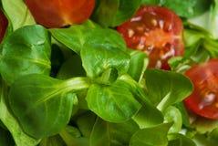 Salad background Stock Photography