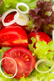 Salad background Royalty Free Stock Image