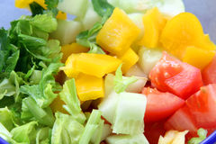 Salad background: cucumber, tomato and celery Stock Photography