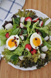 Salad with Bacon and Egg Royalty Free Stock Photos