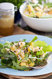 Salad with baked potato, rice and greens Royalty Free Stock Images