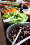 Salad bar. Counter with the vegetables prepared for salads Stock Image