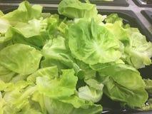 Salad Bar Fresh Vegetables Organic green Healthy Royalty Free Stock Photo