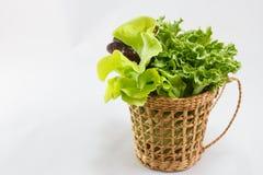 Salad basket Royalty Free Stock Image