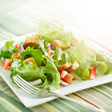 Salad with beaming light. A photo of a salad with beaming sunlight Royalty Free Stock Photos