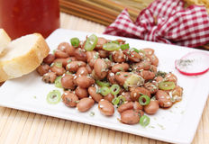 Salad of beans Royalty Free Stock Photo
