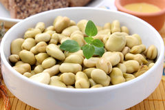 Salad of beans. A salad of beans with vinegar royalty free stock image