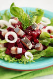 Salad with beet tops Royalty Free Stock Image