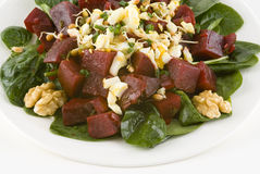 Salad with beets on spinach Stock Image
