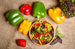 Salad from bell pepper and basil Stock Photography