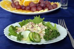 Salad Berlinean Stock Photography