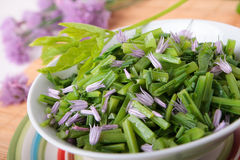 Salad of blanched goutweed and chive flowers Royalty Free Stock Photography