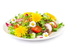Salad with blossoms Stock Image