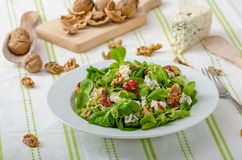 Salad with blue cheese and balsamic dressing Stock Photography