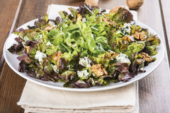 Salad with blue cheese an walnuts Royalty Free Stock Images