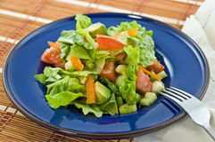 Salad on blue plate Royalty Free Stock Images