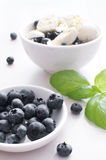 Salad with blueberries and quail eggs Royalty Free Stock Photography