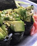 Salad boat sushi. With avocado Royalty Free Stock Photography