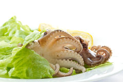Salad with boiled octopus Stock Photo