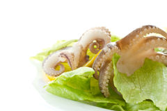 Salad with boiled octopus Royalty Free Stock Images