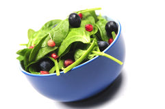 Salad in bowl Royalty Free Stock Photos