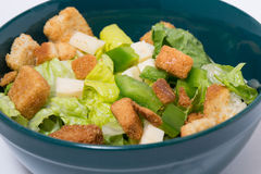Salad Bowl Close Up Stock Images