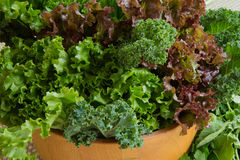 Salad Bowl Filled With Healthy Greens Stock Image