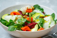 Salad bowl with fish, Royalty Free Stock Photo