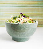 Salad bowl Royalty Free Stock Image