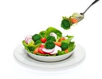 Salad bowl Stock Image