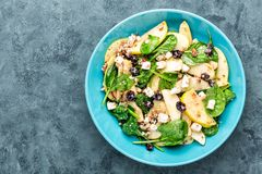 Salad bowl of spinach, apple, white cheese, nuts and cranberry Stock Images
