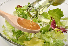 Salad in a bowl with vegetable oil Stock Photography
