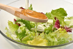Salad in a bowl with vegetable oil Stock Images