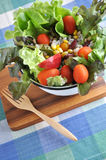 Salad bowl on wooden board Stock Image