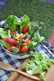 Salad bowl with wooden fork Royalty Free Stock Images