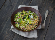 Salad from brussels sprouts with radish, raisins and sprouts of wheat Stock Photos