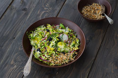 Salad from brussels sprouts with radish, raisins and sprouts of wheat. Healthy diet detox food. On a wooden background in a rustic style Stock Photography