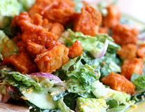 Salad with Buffalo Chicken royalty free stock image