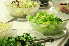 Salad buffet Stock Photos