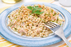 Salad with bulgur, tuna and fresh herbs, selective focus Royalty Free Stock Photos