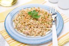 Salad with bulgur, tuna and herbs Royalty Free Stock Photography