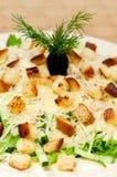 Salad  Caesar Royalty Free Stock Image