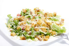 Salad Caesar Stock Photos