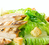 Salad Caesar Stock Photo