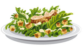 Salad caesar with croutons Stock Image