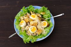 Salad Caesar. With eggs and two forks Stock Photography