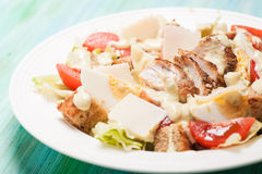 Salad Caesar in a plate Stock Photography