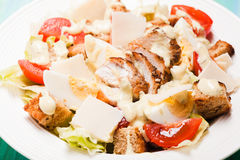 Salad Caesar in a plate Royalty Free Stock Photos